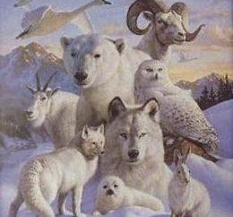 totem animal para o ano de nascimento: patronos humanos aos tempos pagãos