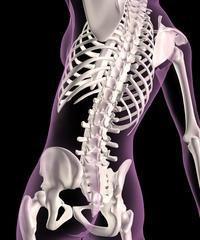 Ważne jest, by znać nazwę mobilnego połączenia kości