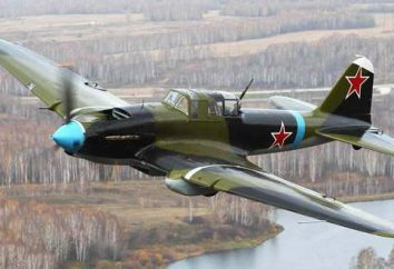Quantos foram construídos Il-2 (1941 – 1945)