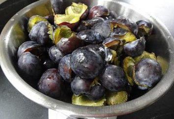 Plum nel suo sugo: con lo zucchero o senza. ricette di cucina