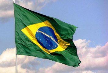 Brasilien: Das Land der Merkmale (Natur, Wirtschaft, Bevölkerung)