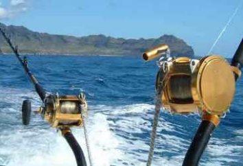 Le bord d'une canne à pêche pour un grand coup de filet