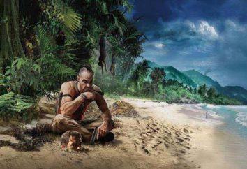 Comandos e fraudes para Far Cry 3