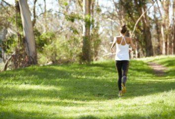 20 habitudes saines qui conduisent à de grands résultats