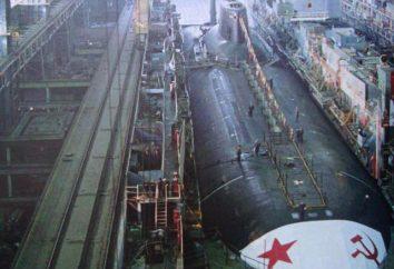 """Giant-sottomarino classe """"Akula"""" Progetto 941: panoramica, caratteristiche"""