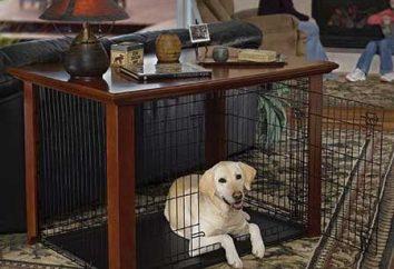 Obudowa dla psów: zbudować sobie