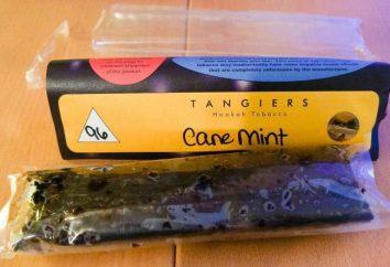 Tangeri tabacco. Descrizione, caratteristiche e le caratteristiche del prodotto