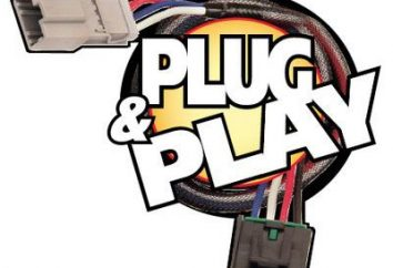 Plug and Play – ¿qué es? sinopsis