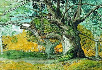 Rysowanie drzewa. Farby, ołówek i gwasz