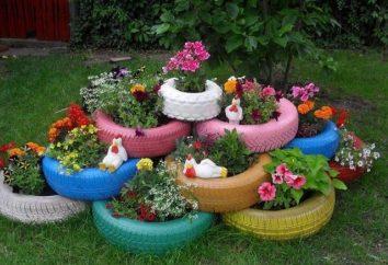 Z tego, co możemy zrobić dla łóżka kwiatów w domku: ciekawe pomysły