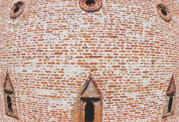 Smolensk historia pared de la fortaleza monumento histórico