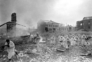batalha Rzhevskaya durante a Grande Guerra Patriótica