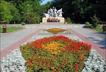 Kumzhenskaya Grove – un luogo preferito dei cittadini