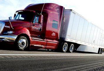 """LLC """"CIT"""" (Transportunternehmen): nützliche Informationen für Kunden"""