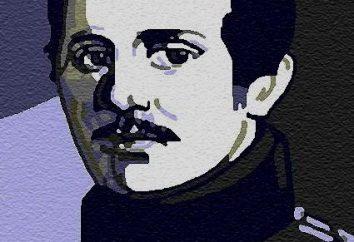 Dichiarazioni circa Lermontov altri poeti. Le dichiarazioni di grandi persone su Lermontov