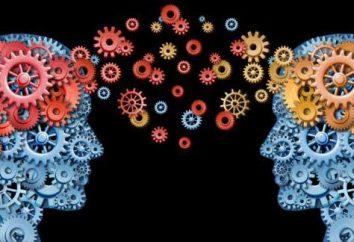 Como são as atividades e necessidades da pessoa? Necessidades, atividades, atividades temáticas