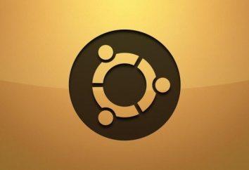 A instalação adequada dos deb-pacotes no Ubuntu