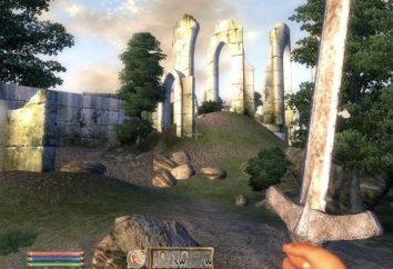 Juegos de computadora en primera persona. Revisión de los mejores juegos