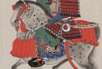 spade samurai. armi giapponesi e le sue specie