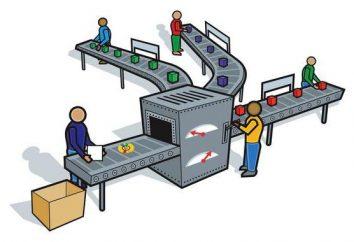Di fabbricazione e produzione di sistemi: definizione, le leggi e le loro specie