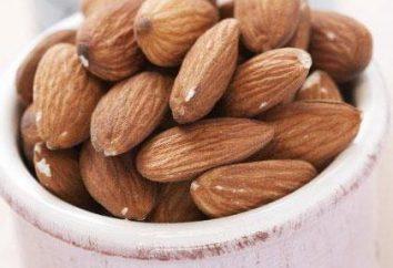Posso mangiare mandorle durante la gravidanza? Mandorle: proprietà utili e controindicazioni
