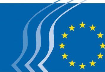 ECE (Commissione economica per l'Europa): composizione, funzioni, regole,