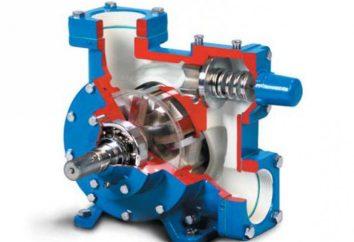 pompe à Vane: la structure, les avantages, le principe de fonctionnement, les prix. Pompe à vide rotative à palettes