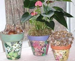 Stilvolle Dekoration Blumentopf