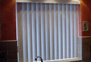 Tipi di tende per le finestre di plastica. Come scegliere le tende giuste per finestre di plastica? Come installare tende per finestre di plastica?