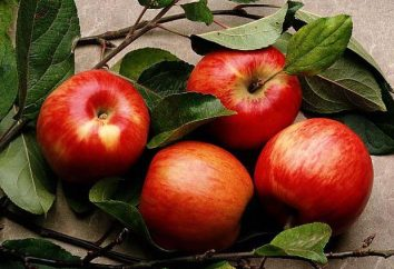 Effektive Gesichtsmaske aus Äpfeln