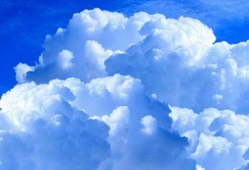 Cos'è il cloud e quali sono le persone che