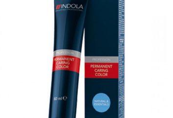 """dye Professional cabelo """"Indola"""": paleta, recursos, revisões"""