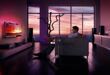 TV: la clasificación de calidad. Ranking de los mejores televisores LCD, televisores inteligentes