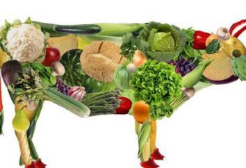 Végétarien – un … végétaliens et végétariens: contraste, les habitudes alimentaires et des faits intéressants