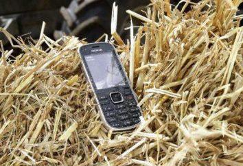 Przegląd Nokia 3720 classic telefon: opis, cechy i recenzje