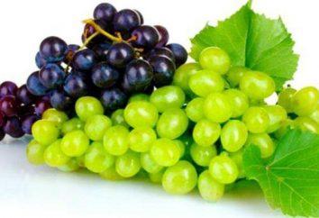 Le uve sono malati? Muffe: il trattamento delle malattie, le cause e prevenzione