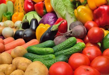 Ciò che va con quello di piantare in una serra? verdure compatibili e incompatibili. La serra per i cetrioli