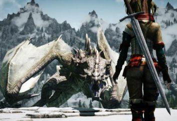 """""""Sangue sulla Skyrim neve."""": Il passaggio della ricerca"""