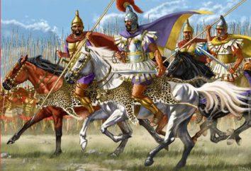 Cavalerie – une arme redoutable des époques passées
