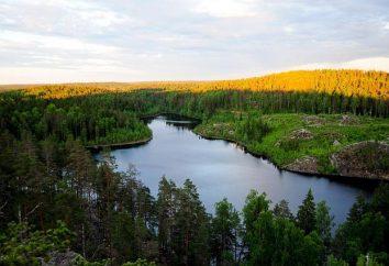 Regione di Leningrado laghi darà una vacanza indimenticabile