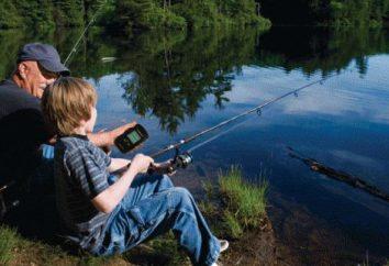 ¿Cómo elegir una sonda para la pesca en verano e invierno: consejos y opiniones de expertos