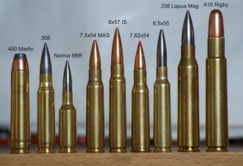 Calibro 338 Lapua Magnum