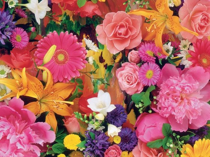 Traumdeutung: Traum Blume des Glücks?