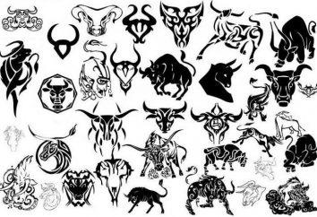 Tatouage « Taureau »: la description, la valeur, croquis