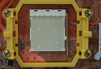 """""""Socket AM2"""" od firmy AMD: procesory, chipsety modele i spetsfikatsii platformie sprzętowej"""