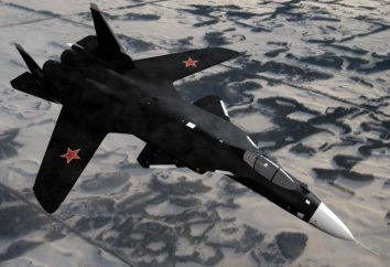 """Su-47 """"Berkut"""": fotografie, właściwości. Dlaczego blisko projekt?"""