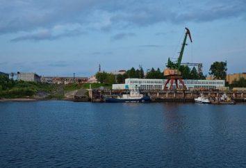 """PJSC """"Yaroslavl Werft"""": Geschichte, Produktion, Kontakte"""