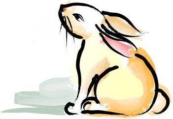 Anno del coniglio – che è nato?