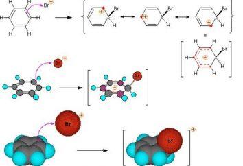 Reazioni di sostituzione: descrizione, esempi equazione