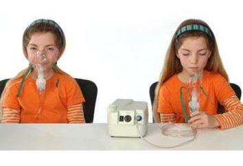 Crianças nebulizador: características, localização, revisões